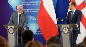 ващиковский, польша, грузия, тбилиси, варшава, грузия в ес, грузия евросоюз, скандал польши и украины, украина, скандал, политика, мид польши, украина польша, польша украина