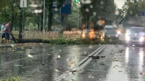 Киев, погода, непогода, дождь, ураган, деревья, пробки, ущерб