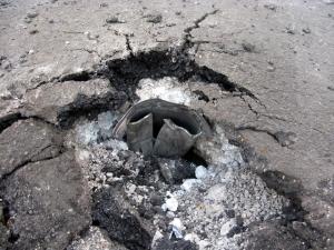 днр,донецк, происшествия, ато, армия украины. восток украины, донбасс