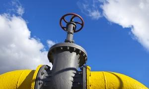 Словакия, увеличила реверс газа, Порошенко, Фицо, Лайчак
