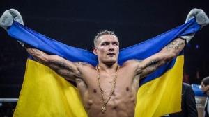 украина, спорт, бокс, Усик, Беллью, победа, анализ боя