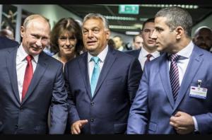 венгрия, мид украины, посольство украины в венгрии, украина венгрия, россия, путин, владимир путин, любов непоп, киев, скандал, политика, россия венгрия, награда путина, университет венгрии