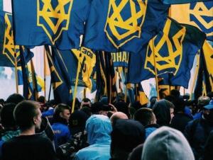 правительство, министерство, Украина, МИД, нацкорпус, националисты, акция, требование, посол