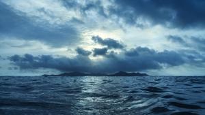 Аравийское море, мертвая зона, Оманский залив, причина, исследования