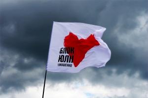 Батькивщина, Винница, патриоты, Янукович, протесты, целостность, расшатывать