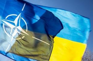 украина нато, венгрия украина, закон образование, политика, владимир гройсман