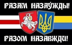 соцопрос, Украина, Россия, Беларусь, ЕС, общество, приоритеты, друзья, НАТО