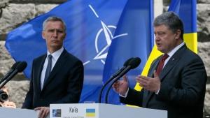 Украина, НАТО, США, Йенс Столтенберг, Петр Порошенко, Встреча