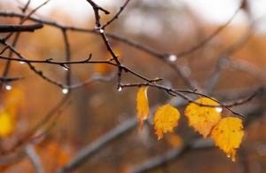 осадки, похолодание, дожди, грозы, ливни, погода в украине, прогноз погоды, новости украины