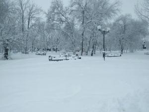 погода, снегопад, луганск, фото, донбас, погода в луганске, снег
