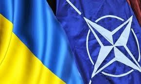 НАТО, протезирование, бойцы, АТО, помощь,политика