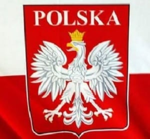 Польша, Украина, АТО, выборы ВР