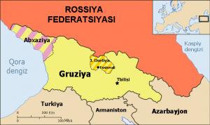 ващиковский, польша, грузия, тбилиси, варшава, грузия в ес, грузия евросоюз, скандал польши и украины, украина, скандал, политика, мид польши, украина польша, польша украина, россия, южная осетия, абхазия, швеция, нато