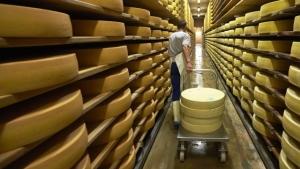 россия, ес, санкции, дания, сыр
