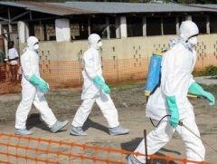 Эбол, Африка, Минздрав Украины, вирусы