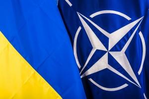 выборы в ЛНР, Луганск, ДНР, Донецк, НАТО, Минские договоренности, новости, Украина