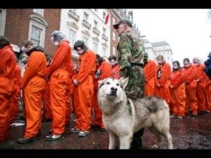 США, пытки, общество, Гуантанамо, армия США, Ирак, Афганистан