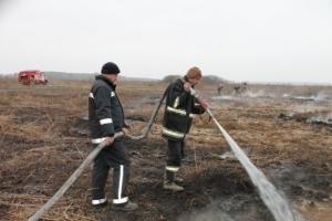 черниговская область, происшествия, новости украины, пожары