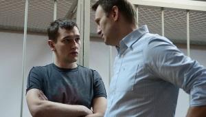 алексей навальный, общество, происшествия, политика, новости россии