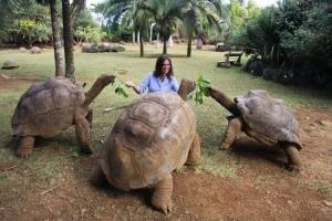 дарвин, теория эволюции, галапагоссы, черепахи