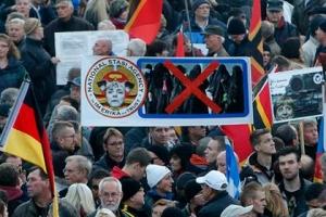дрезден, германия, митинг, избили оператора, Russia Today