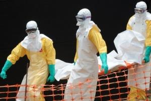 швейцария, общество, медицина, происшествия, лихорадка эбола