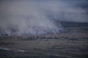лесной пожар, брянская область, чернобыль, радиация