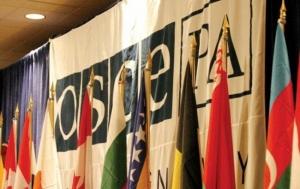 Украина, Россия, ОБСЕ, скандал, заседание, российская делегация, антироссийская резолбция, Петр Толстой, фейсбук