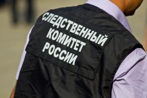 украина, россия, днр, горловка, гибель детей, ск рф, расследование, всу, мина, взрыв