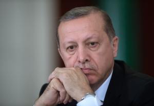 референдум, Турция, Эрдоган, диктатор, правитель, лидер, интервью, расширение полномочий, президентская республика, демократия, воля народа