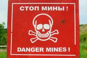 украина, россия, днр, горловка, тымчук, обсе, гибель детей, взрыв, мина, документы