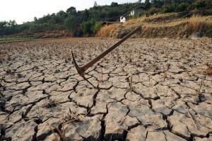 крым, злой одессит, засуха, вода в крыму, сельское хозяйство