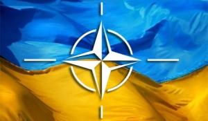 Украина, НАТО,Россия, Грузия, геополитика, война, армия рф