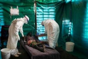 Лихорадка Эбола, США, Европа, Африка, лекарство, кризис