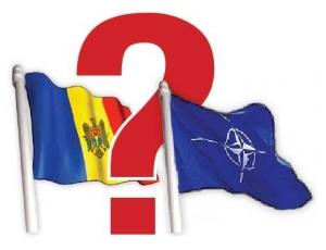 нато, молдова, румыния, сенат