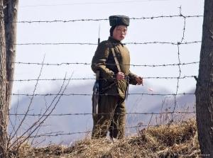 кндр, северная корея, ким чен ын, расстрелы, казни, репрессии