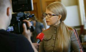 юлия тимошенко, батькивщина, свобода слова, тимошенко, вру, арьев, политика, украина, земельная реформа, новости украины