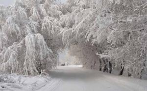 """Погода, Украина, """"Укргидрометцентр"""", Прогноз, Зима, Морозы"""