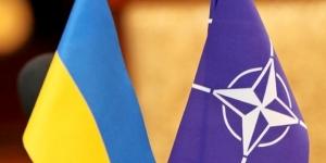 юго-восток Украины, АТО, НАТО, Донбасс, Порошенко, армия Украины, политика