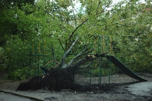 Донецк, непогода, трамваи, троллейбусы, ветер, горсовет
