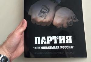 Домодедово, футбол, Россия, коррупция, Единая Россия, Шокуров