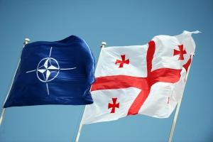 Политика, новости Грузии, Михаил Саакашвили, НАТО