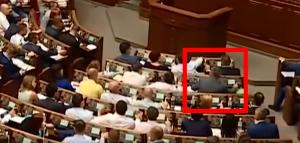 Украина, Верховная Рада, Скичко, Слуга народа, Литвиненко.