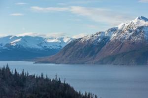 сша, аляска, анкориджа, землетрясение, афтершоки, глокнер, secureteam10, смотреть видео