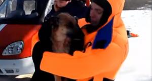 река Ворскла, собака, лед, провалилась под лед, спасение, спасатели, Полтавская область, происшествия, общество, фото, видео