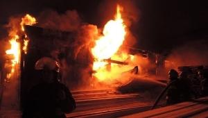 пожар, погибшие, дети, киевская область