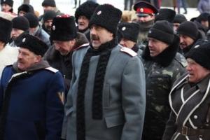 лнр, ато, луганск, казаки, козицын