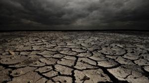экология, апокалипсис, перенасленность, пестициды