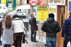 нбу, нацбанк, гонтарева, политика, экономика, общество, украина