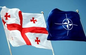 нато, грузия, военное обозрение